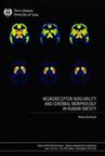 Neuroreceptor availability and cerebral morphology in human obesity
